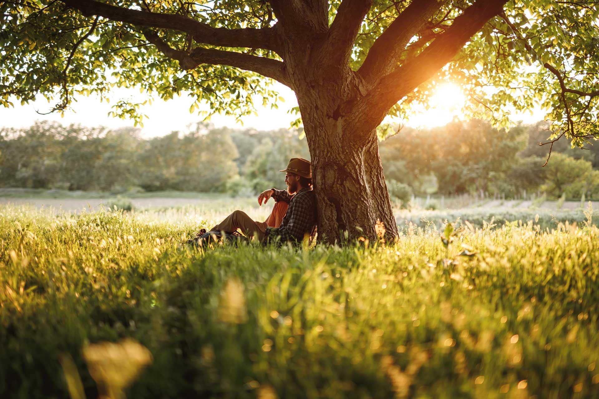 Man sitting under a tree at Kohlnhofer Insurance Agency