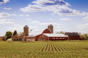 Farm Insurance at Kohlnhofer Insurance Agency